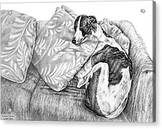 Couch Potato Greyhound Dog Print Acrylic Print by Kelli Swan