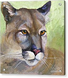 Acrylic Print featuring the painting Cougar 2 by Bonnie Rinier