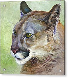 Acrylic Print featuring the painting Cougar by Bonnie Rinier