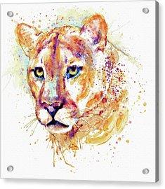 Cougar Head Acrylic Print