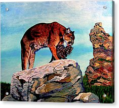 Cougars Mother And Cub Acrylic Print by Stan Hamilton