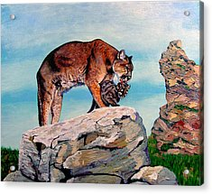 Cougars Acrylic Print by Stan Hamilton