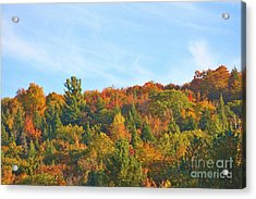 Acrylic Print featuring the photograph Couleurs D' Automne by Aimelle
