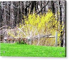 Countrified Spring Acrylic Print by Debra     Vatalaro