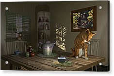 Country Cat Acrylic Print by Mary Almond