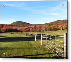 Country Farm And Family Plot Acrylic Print