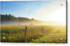 Country Fencerow Acrylic Print