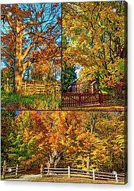 Country Fences Collage - Paint Acrylic Print