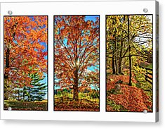 Country Fences Triptych Acrylic Print