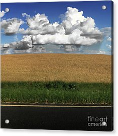 Acrylic Print featuring the photograph Country Field by Brian Jones