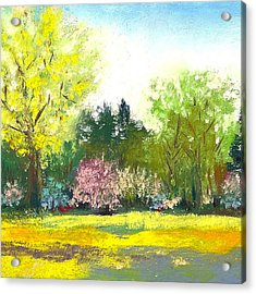 Country Garden Acrylic Print by David Patterson