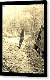 Country Girl Walking - Sepia With Border Acrylic Print by Scott D Van Osdol