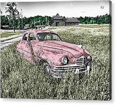 Country Life Acrylic Print by Ericamaxine Price