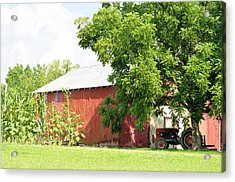 Country Life Acrylic Print by Jan Amiss Photography