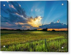 Country Life Acrylic Print by Marvin Spates