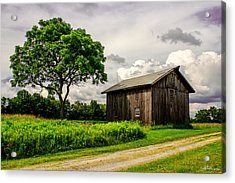 Country Life Acrylic Print by Skip Tribby