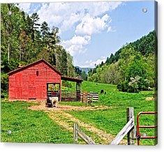 Country Life Acrylic Print by Susan Leggett