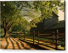 Country Morning - Holmdel Park Acrylic Print