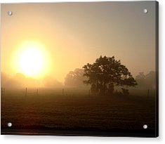 Country Morning Sunrise Acrylic Print by Kimberly Camacho