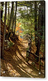 Acrylic Print featuring the photograph Country Path by Arthur Dodd