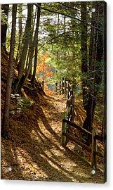 Country Path Acrylic Print by Arthur Dodd