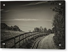Country Path Acrylic Print by Martin Newman