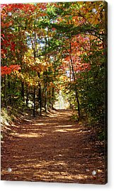 Country Path Acrylic Print by Ralph  Perdomo