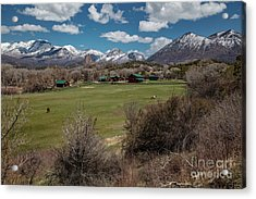 Country Ranches  Acrylic Print