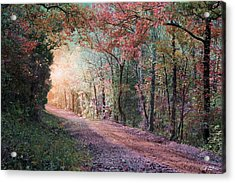 Country Road Acrylic Print by Bill Stephens