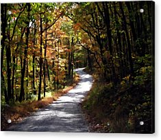 Acrylic Print featuring the photograph Country Road by David Dehner