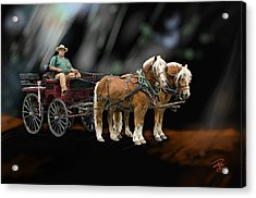 Country Road Horse And Wagon Acrylic Print