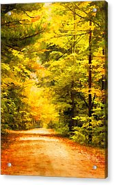 Country Road In Autumn Digital Art Acrylic Print