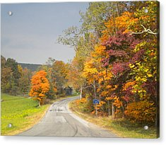 Acrylic Print featuring the photograph Country Road In The Fall by Diannah Lynch