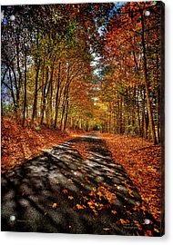 Country Road Acrylic Print by Mark Allen