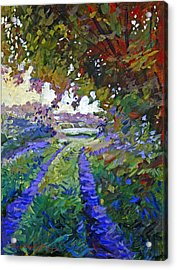 Country Roads Provence Acrylic Print by David Lloyd Glover