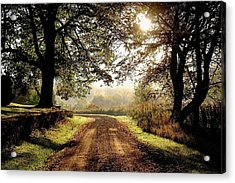 Country Roads Acrylic Print by Ronda Ryan