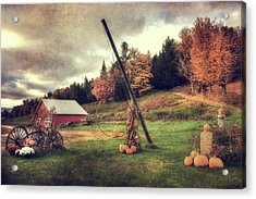 Country Scene In Autumn Acrylic Print by Joann Vitali
