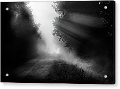 Acrylic Print featuring the photograph Country Trails by Dan Jurak