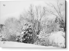 Country Winter Acrylic Print by Kathy Jennings