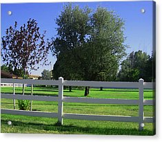 Acrylic Print featuring the photograph Country Yard by Tammy Sutherland