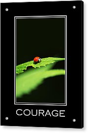 Courage Inspirational Motivational Poster Art Acrylic Print by Christina Rollo