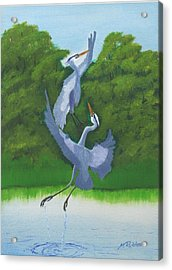 Courtship Dance Acrylic Print by Mike Robles