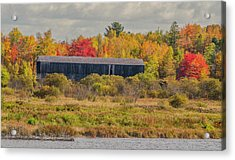 Covered Bridge In Foliage Acrylic Print by Roger Lewis