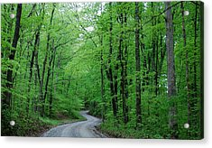 Covered Bridge Road Acrylic Print by Beverly Cazzell