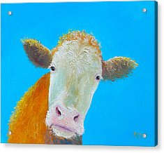 Cow Art For The Kitchen Acrylic Print