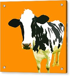 Cow In Orange World Acrylic Print by Peter Oconor