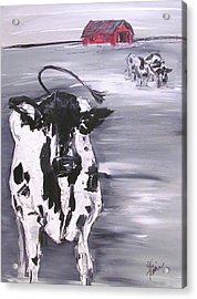 Cow In Winter Acrylic Print by Terri Einer