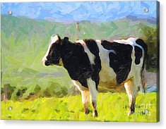 Cow On A Hill Acrylic Print by Wingsdomain Art and Photography