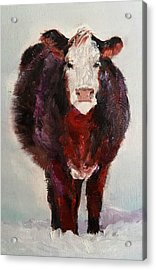 Cow Painting  Acrylic Print