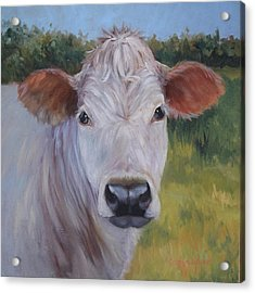 Cow Painting Ms Ivory Acrylic Print
